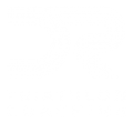 DR Triathlon Coaching